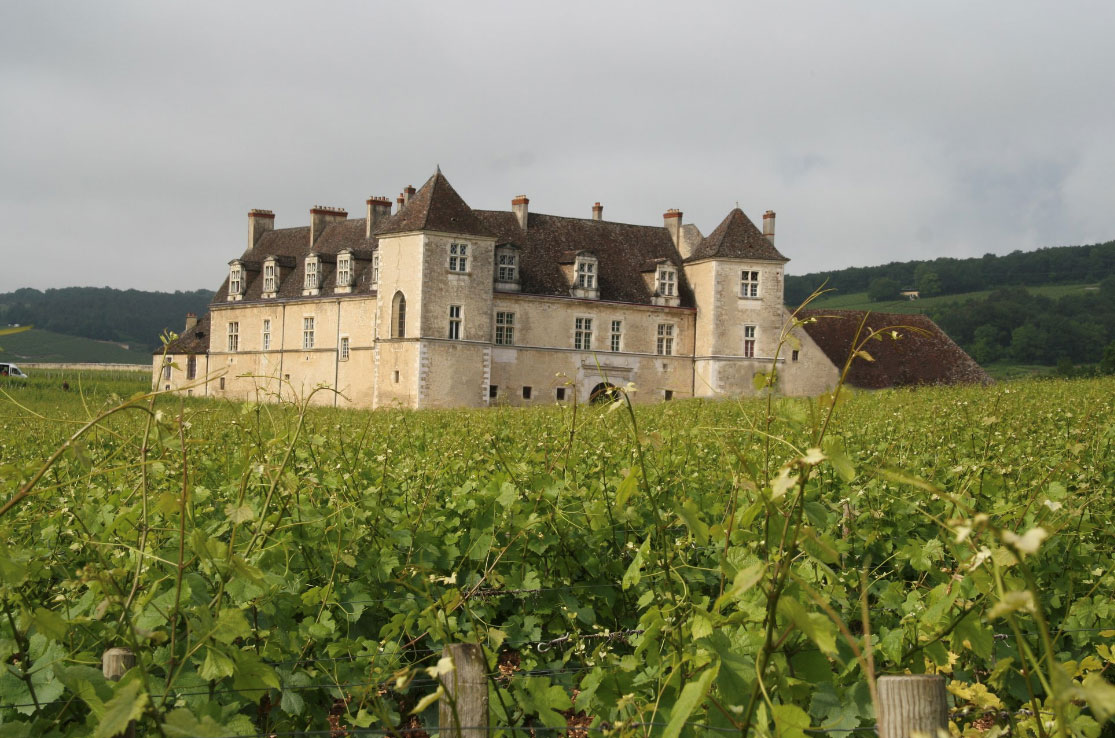 bourgogne-discovery-chateau-clos-vougeot